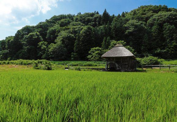 田子町   「日本で最も美しい村...